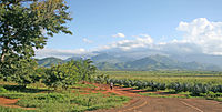 Mt Uluguru and Sisal plantations.jpg