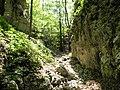 Mudna dol - panoramio (3).jpg