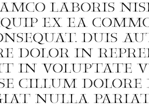 Furius Dionysius Filocalus - Sample of the Filocalus typeface, published by type designer Ellmer Stefan in 2016, and based on the Filocalian Letter.