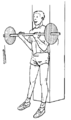Musculation exercice biceps 2.png