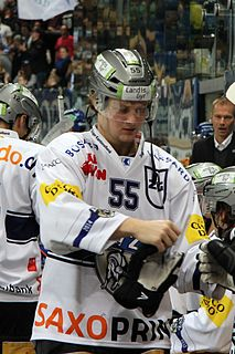 Calle Andersson Swedish ice hockey player