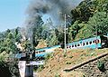 Zug der Nilgiri Mountain Railway