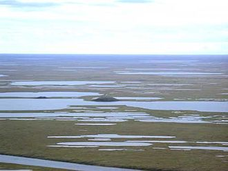 National Petroleum Reserve–Alaska - A picture of the NPRA area looking very similar to a more southern wetland.