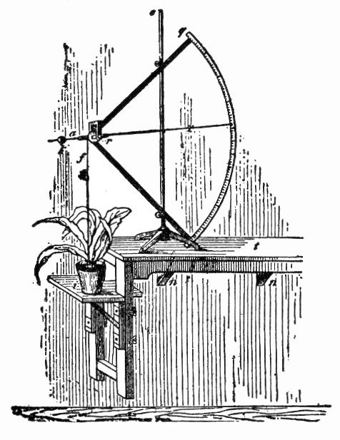 NSRW Auxanometer