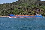 Naime Ana cargo on the Bosphorus in Istanbul, Turkey 001.jpg