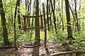 Nationalpark Hainich-Erlebnispfad Feensteig-by-Leila-Paul-IMG 3975 10.JPG