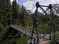 Naturpark Ötscher-Tormäuer - Neue Fußgängerbrücke über den Erlauf-Stausee.jpg