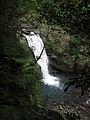 Neidong Waterfall rushing over rocks in lush green forest.jpg