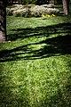 New Mos Eisley - panoramio (36).jpg