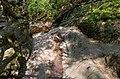 Ninglinspo - panoramio (4).jpg