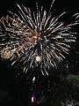 Nishi-nippon Ohori Fireworks Festival 20140801-24.jpg