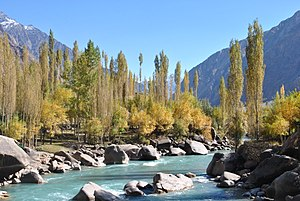 Yasin Valley - View of river Yasin from Noh bridge.