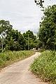 NorthBorneoRailway RailwayStretchBeaufortWeston OldEmbankment-05.jpg