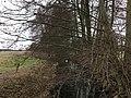 Nuthe-Urstromtal Woltersdorf Steinerfließ Höhe Walkmühle Blick nach Süden.jpg