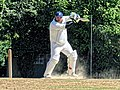 Nuthurst CC v. Henfield CC at Mannings Heath, West Sussex, England 059.jpg
