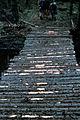 Nye Mountain crash 25 12 78 Cris Claxton Ray 07.jpg