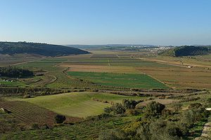 Agriculture in Portugal - Most of Portugal's farms have a small area devoted to a diversified intensive farming, like these in the Oeste Subregion.