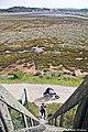 Observatório de Aves da Foz de Rio Real - Portugal (50529777023).jpg