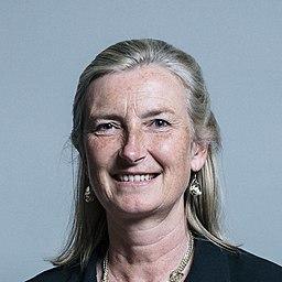 Official portrait of Dr Sarah Wollaston crop 3