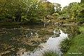 Ogród Japoński - panoramio.jpg