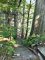 Oguni, Tsuruoka, Yamagata Prefecture 999-7316, Japan - panoramio (8).jpg