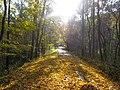 Oil Creek bike path - panoramio.jpg