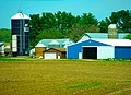 Okee Dairy Farm - panoramio.jpg