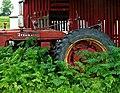 Old Tractor-New Weeds - Flickr - dok1.jpg