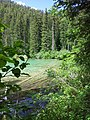 Olive Lake - panoramio (2).jpg
