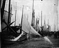 Oyster Boats New Orleans.jpg