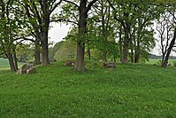 Pöglitz, Großsteingrab (2013-05-18), by Klugschnacker in Wikipedia (1).JPG