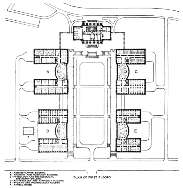 File:PSM V69 D097 Plan Of The New Harvard Medical School