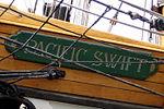 Pacific Swift 10.JPG