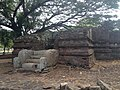Panduwasnuwara archaeological site 3.jpg