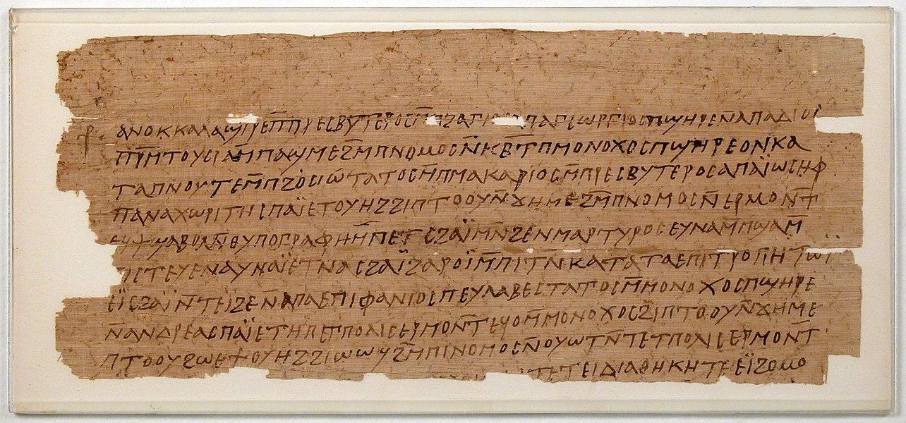 papyrus - image 10