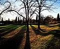 Parco delle mura - ombre.jpg