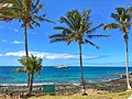Parque Nacional Marinhos dos Abrolhos. Bahia. Por Gustavo Abrahim 27.jpg