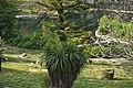 Parque do Eduardo VII (5580410851).jpg