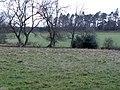 Pastures and woodland west of Shaws Lane (2) - geograph.org.uk - 629572.jpg