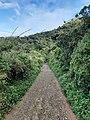 Path to wilderness.jpg