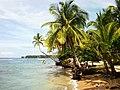 Paunch, Bocas del Toro, Panama - panoramio.jpg