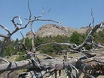 Peak X, southern outcropping, Kenosha Mtns.jpg
