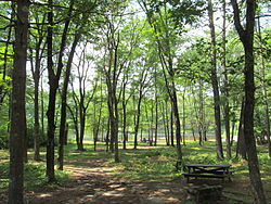 Pearl Hill State Park, Townsend MA.jpg
