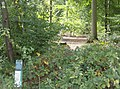 Permissive path into Nippers Grove - geograph.org.uk - 593801.jpg