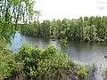 Pervomaysky District, Tomsk Oblast, Russia - panoramio (3).jpg