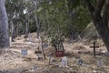 Pet cemetery on Santa Catalina Island, a rocky island off the coast of California LCCN2013634901.tif