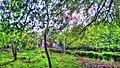 Phước Tích - panoramio (15).jpg