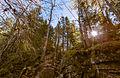 Piney Wood Hills Trail, Sibley Peninsula, Ontario (24417651146).jpg