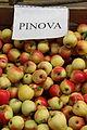 Pinova (apple) 1.jpg