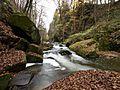 Pirna (Liebethaler Grund) (22941219106).jpg